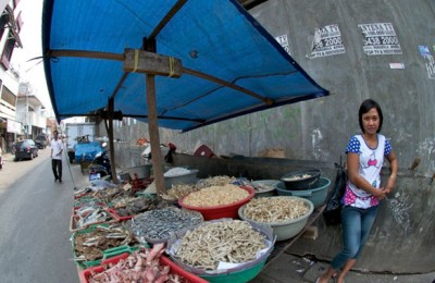 Ibu-Meut-The-Fish-Selling-lady