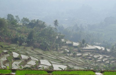The-view-of-the-terraced-rice-fields