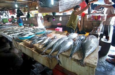 Various_tuna_and_mackerel_for_sale_in_Jimbaran