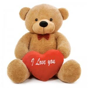 Valentine's Day - Teddy Bear