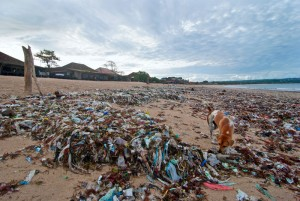 Plastic Pollution at Jimbaran
