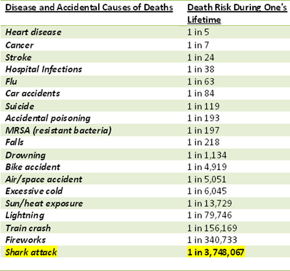 Annual Risk of Death During One's Lifetime