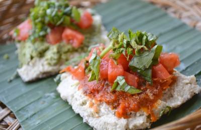 Living Food Lab - Bali