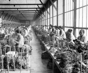 Kretek Factory Workers