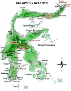 Soroako map