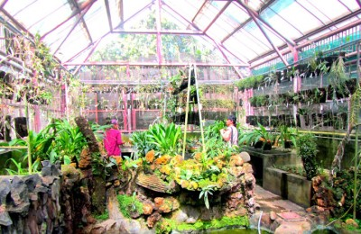Glasshouse at Purwodadi Botanical Garden