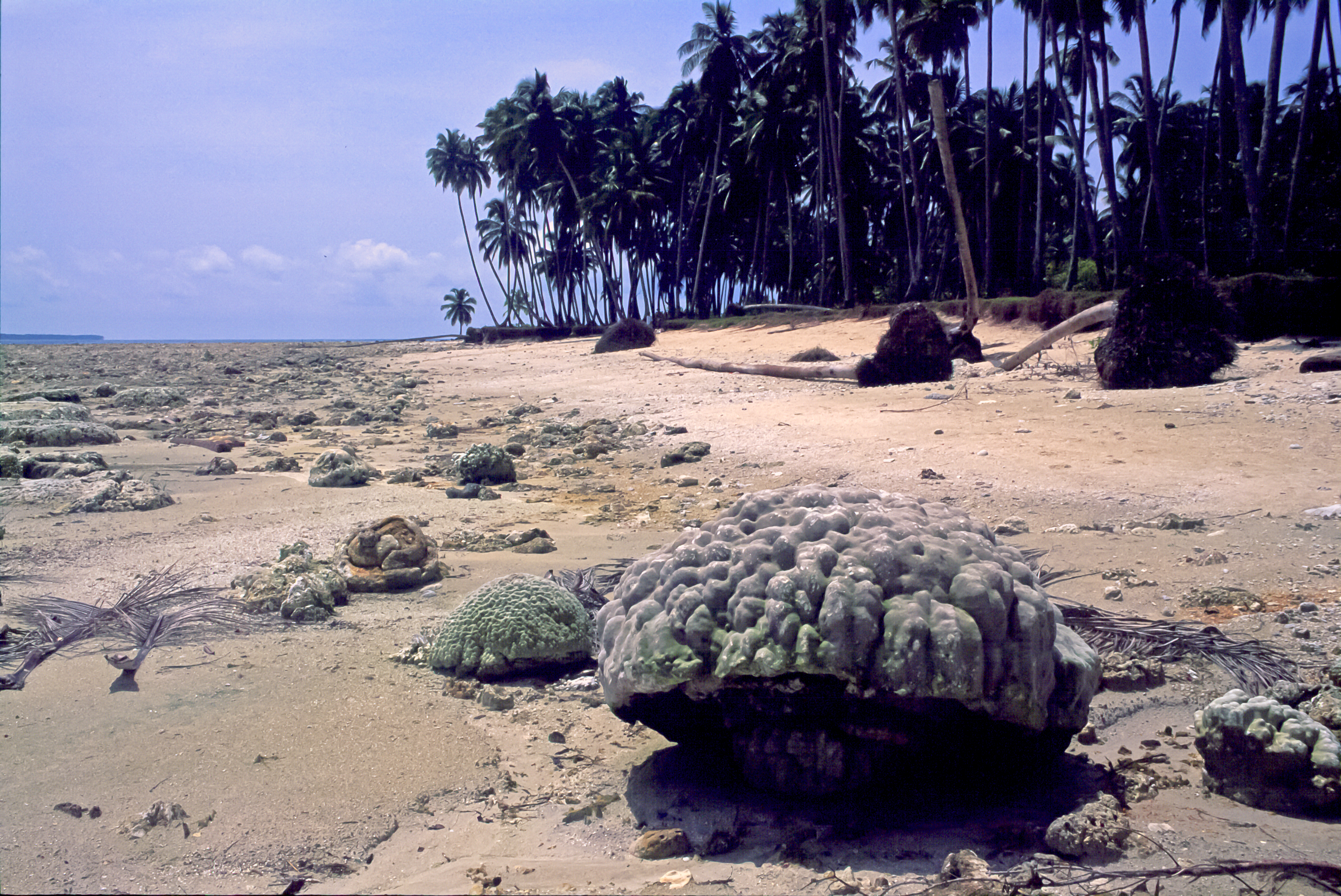 Simeulue Island Indonesia  City new picture : Simeulue Island, a Decade After the Tsunami and Nature Reminds Us ...