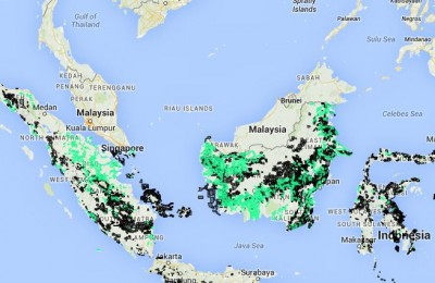 Green shows oil palm estates. Black shows mining concessions