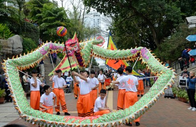 Kowloon Park Dragon Dance