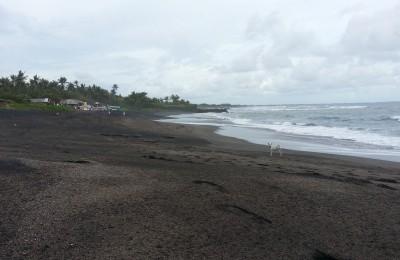 The black sand beach at Pantai Seseh