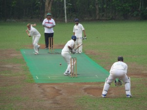 Members playing cricket