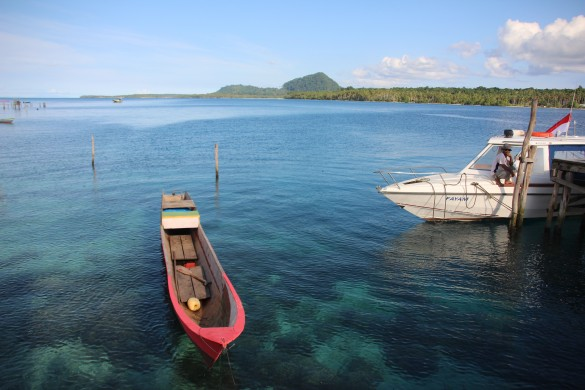 View of Mt Bonfar and Coral Reefs from Balal village, Kofiau island | Photo Courtesy of Grace Susetyo