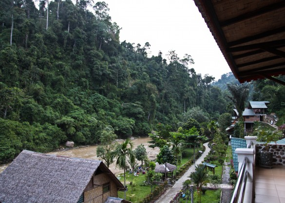 Bukit Lawang is the gateway village to Gunung Leuser National Park and the Bohorok River is the only thing that separates mankind from the wilderness. Photo Angela Richardson