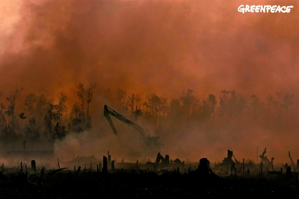 Smoke from smouldering fires obscures an excavator digging a peatland drainage canal in the PT Rokan Adiraya Plantation oil palm plantation near Sontang village in Rokan Hulu, Riau, Sumatra.