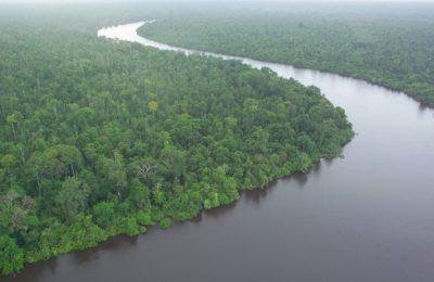 Peatlands in Indonesia