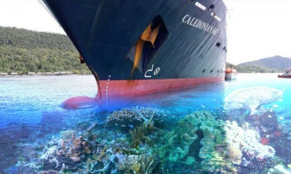 Indonesia Named Three Penalties For Viral Raja Ampat's Accident2