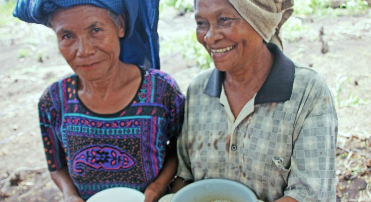Maria Loretha - Likotuden Women and Sorghum by Grace Susetyo