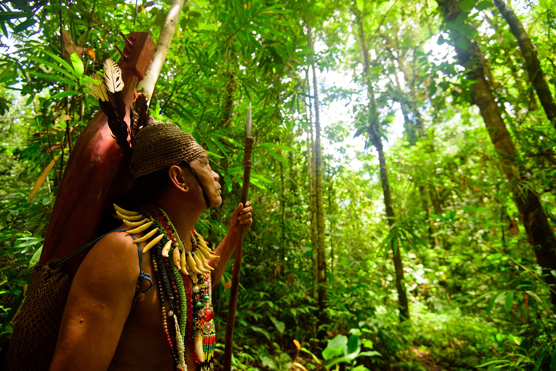 A MAN AND HIS FOREST I spend a lot of time in Kalimantan and nothing gives me more satisfaction than hanging out with my Dayak friends in the original forests.