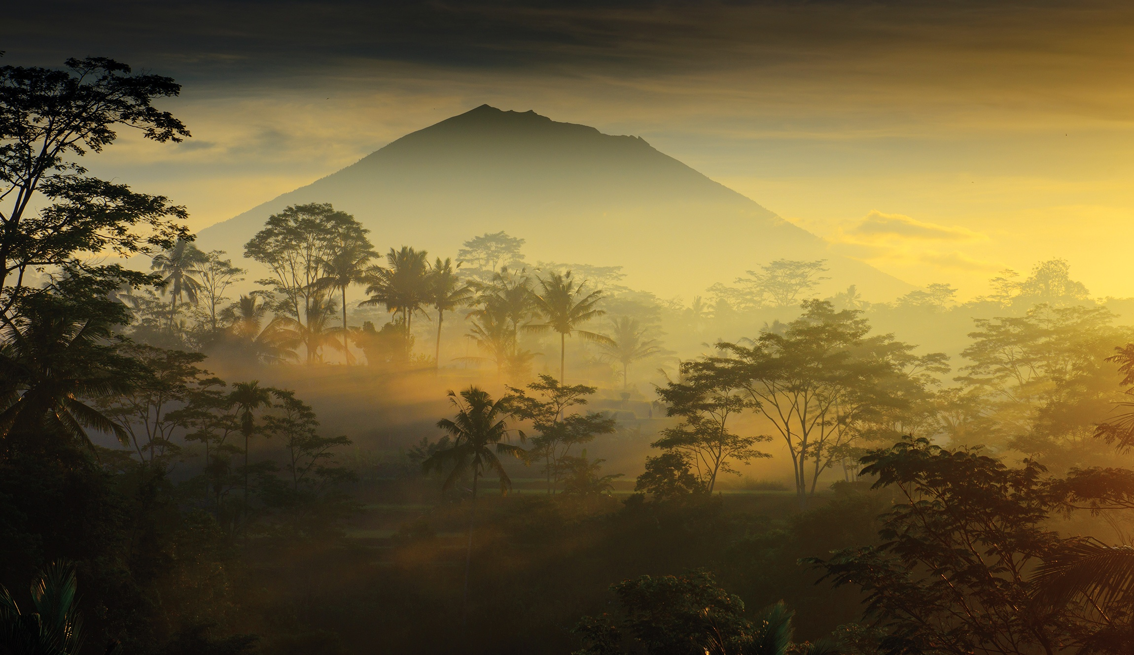 BALI MAGIC A typical morning in the Bali countryside as the mist infiltrates the palm trees and the towering shape of Gunung Agung. The sacred Volcano looms above the landscape.