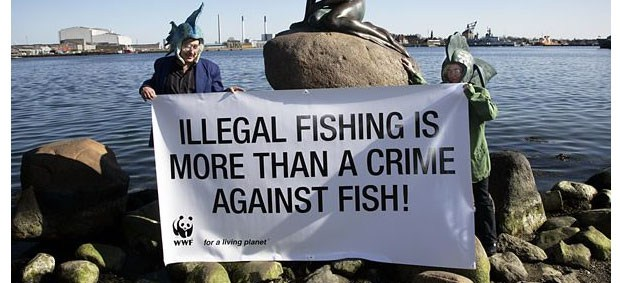 Illegal-fishing-wwf-featured