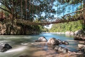Jembatan Akar, West Sumatra